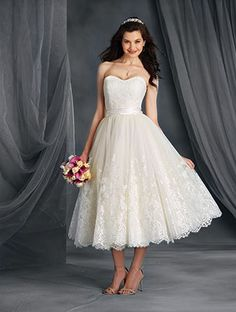 Discover the Alfred Angelo Bridal Gown. Find exceptional Alfred Angelo Bridal Gowns at The Wedding Shoppe Tea Wedding Dresses, Tea Length Wedding Dress, Tea Length Dresses, Cheap Wedding Dress, Designer Wedding Dresses, Ball Dresses, Ball Gowns, Gown Wedding, Dresses 2016