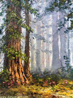 "$220 ""Smoky Redwoods"", 8x6, oil on panel,"
