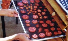 """""""Build a Solar Food Dehydrator"""" With a solar food dehydrator, you can use free energy from the sun to preserve your harvest.   From MOTHER EARTH NEWS"""