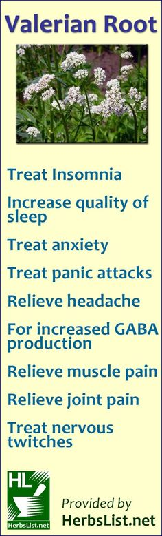 Sleep Remedies Valerian Root Uses For Health - the main ingredient in valium - you just need to get past the smell (dirty socks) - Find out how you can use Valerian Root to help you get to sleep faster, get more restful sleep and reduce anxiety and more. Healing Herbs, Medicinal Plants, Natural Healing, Natural Medicine, Herbal Medicine, Medicine Bag, Valerian Root Benefits, Valerian Tea, Autogenic Training