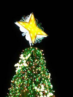 Star Tippy Top Topper #christmas #washingtondc