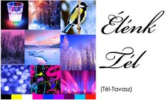 Élénk Tél Season Colors, Voss Bottle, Lava Lamp, Table Lamp, Seasons, Palette, Home Decor, Colour, Color