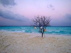 Soneva Fushi Cocktail on the Sandbar.  Baa Atoll is named as a UNESCO Biosphere Reserve.