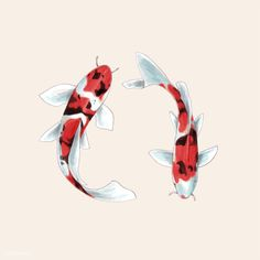 """Koi fish are the domesticated variety of common carp. Actually, the word """"koi"""" comes from the Japanese word that means """"carp"""". Outdoor koi ponds are relaxing. Koi Fish Drawing, Koi Fish Tattoo, Fish Drawings, Abstract Illustration, Japon Illustration, Japanese Illustration, Art Illustrations, Koi Art, Fish Art"""