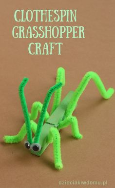 clothespin grasshopper craft fot kids