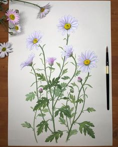 Watercolor Painting Techniques, Watercolor Artwork, Watercolor Cards, Watercolor Illustration, Watercolor Flowers, Pencil Drawings Of Flowers, Colorful Drawings, Plant Painting, Fabric Painting