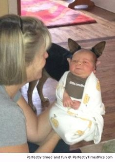 A special kind of baby – The ears are not normal, but you do see what is behind the baby? | Perfectly Timed Pics