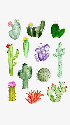 Find the desired and make your own gallery using pin. Drawn cactus sketch - pin to your gallery. Explore what was found for the drawn cactus sketch Painting Inspiration, Art Inspo, Watercolor Art, Simple Watercolor, Watercolor Animals, Watercolor Background, Watercolor Landscape, Watercolor Flowers, Watercolor Succulents
