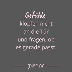 Saying of the day: The best sayings of- Spruch des Tages: Die besten Sprüche von feelings -