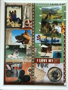 Quadre dedicat al gos. Perro/dog+scrapbook