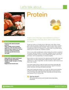 Protein Fact Sheet- need an easy way to get your protein in, then I can help Herbalife is amazing it has helped me lose weight and now have amazing energy.