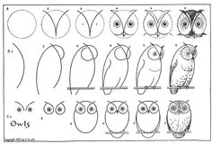 The graphics fairy owl drawing tutorial Drawing Websites, Drawing Lessons, Art Lessons, Drawing Guide, Drawing Ideas, Drawing Pictures, Drawing Tutorials, Art Tutorials, Drawing Techniques