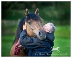 Love the relationship going on here.  Highland pony.