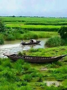 Beautiful Bangladesh: Boats, Rivers and Canals, and of course, Lush Green. Farmer Painting, Boat Painting, Landscape Photos, Landscape Photography, Nature Pictures, Cool Pictures, House Boat Kerala, Bangladesh Travel, Places To Travel