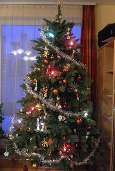 Vianočný stromček 185 cm Rocky Mountain Spruce