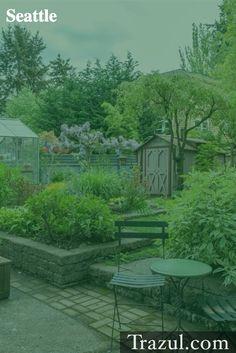 Green backyard in Seattle