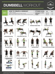 Dumbbell Exercises Laminated Poster Chart Strength Training Core Chest Legs Shoulders & Back Build Muscle, Tone Tighten is part of Plyometric workout - Full Body Dumbbell Workout, Plyometric Workout, Calisthenics Workout, Plyometrics, Dumbbell Exercises, Chest And Tricep Workout, Body Exercises, Fitness Workouts, Gym Workout Tips