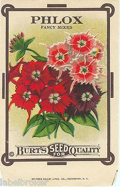 1000 Images About Vintage Seed Catalog Amp Nursery Trade