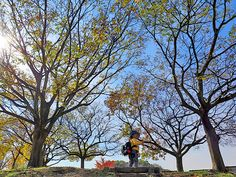 2014年11月21日(金)こんにちは。今日は子供たちを保育園へ送迎する係。子供たちを保育園まで見送り、その足で神戸市内まで移動して「全国質屋ブランド品協会」の定例会議に出席。会議を早退させていただいて、午前保育だった次男のお迎え。加古川~神戸~加古川、渋滞に巻き込まれなかったことに感謝です。そんなお迎え、今日はポカポカ陽気の公園を散歩。良い気分転換になりました(^^  それでは、今日も皆様にとって良い1日になりますように☆ 【加古川・藤井質店】http://www.pawn-fujii.jp/