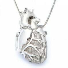 anatomical heart locket