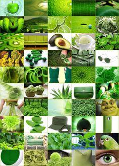 50 tinten groen | BBstyle