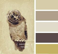 Some nice neutrals,a rich brown and a lovely mustard