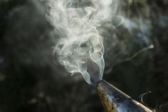 Close-up of smoke emitting from bee smoker used in apiculture Bee Smoker, Royalty Free Images, Close Up, Clip Art, Stock Photos, Cover, Illustration, Beekeeping, Copyright Free Images