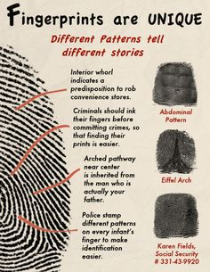 Fingerprints Are Unique The Effective Pictures We Offer You About Applied Science learning A quality picture can tell you many things. You can find the most Forensic Psychology, Forensic Science, Detective, Science Fair Projects Boards, Forensic Anthropology, Applied Science, Different Patterns, Science Experiments, You Are The Father