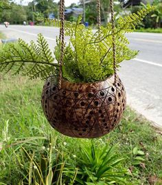 Medium Size Coconut Shell Hanging Planter Pot lacquer Color