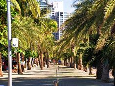 New Look Pattaya after renoation. Welcome to see Pattaya Today.. The Beach is so wonderful !!