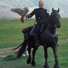 Rutger Hauer at his most handsome. As Navarre in Ladyhawke riding a Friesian, Pretty Horses, Horse Love, Beautiful Horses, Beau Film, Rutger Hauer, Friesian Horse, Andalusian Horse, Arabian Horses, Draft Horses