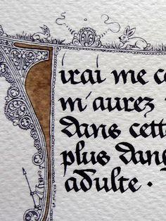 Anachropsy - Calligraphie latine par Benoit Furet - Lapin