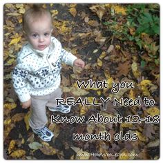 Everything you REALLY need to know about your baby's development from 12 -18 months!  How Wee Learn