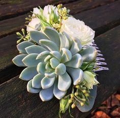 Succulent and white Clustar Rose floral comb made by Forget-me-not Floret. Check out https://www.facebook.com/forgetmenotfloret/
