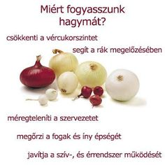 Életmód cikkek : Zöldség és gyümölcsök hatásai Doterra, Health Remedies, Anti Aging, Onion, Garlic, Life Hacks, Vitamins, Food And Drink, Health Fitness