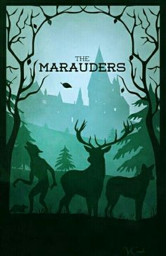 Four marauders  Harry Potter
