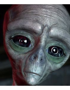 extraterrestrial greys - Google Search
