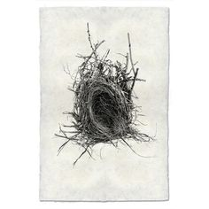 Nest Print #12
