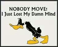 Sometimes.. i need everyone to shut up and stop moving!