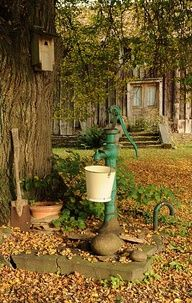 lOVE THESE OLD WATER PUMPS