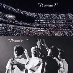 One .. we made out promise and we will never break it .repost and put #true directioner , if you are going to keep ur promise forever even when u die ....