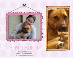 YAYAYA a new year and a new ( FOREVER) home for Stephie!