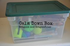 Calm Down Box | Dragons and Dragonflies