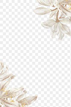 White Flower Background, White Flower Wallpaper, Paper Background Design, Lily Wallpaper, White Lily Flower, Flower Background Wallpaper, Flower Phone Wallpaper, White Lilies, White Orchids