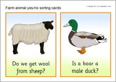 Farm animal yes/no sorting cards