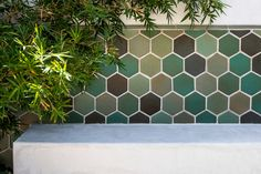 Love this green concrete hexagon tile wall as a feature point in this Californian backyard. Patio Tiles, Outdoor Tiles, Hanging Ceiling Lights, Bottle Wall, Hexagon Tiles, Tile Installation, Hexagons, Tile Ideas, Tile Patterns