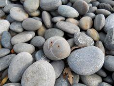 beach stones, rye nh