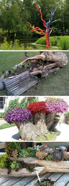 Dead old trees may seem like a problem but there is always a way to make the most of the worst situation. Dead wood isn't necessarily have to be unsightly and if it is there are ways to make it work for your landscape. Whether you have a tree stump or a whole dead tree in your garden, there are ways to turn them into a decoration rather than an eye sore.