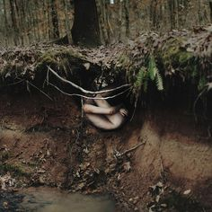 alex stoddard photography via a billion tastes and tunes