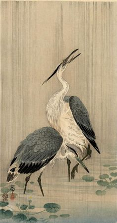 Herons in the Rain by Ohara Koson (or Shoson)